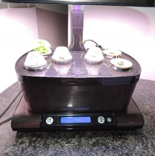 AeroGarden Growth Update